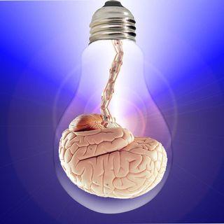 """243- La Mente """"sottosopra""""... il legame fra cervello e realtà..."""