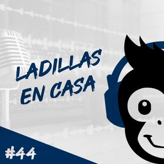 Episodio 44 - Ladillas En Casa