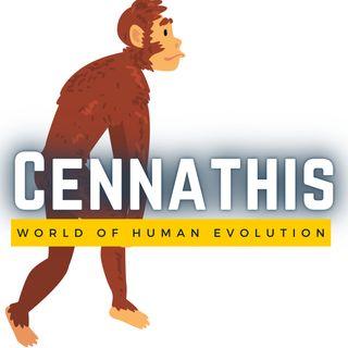 Cennathis on Youtube