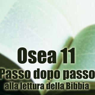 Osea 11