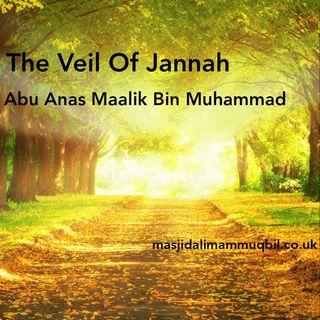 The Veil Of Jannah | Abu Anas Mālik bin Muhammad