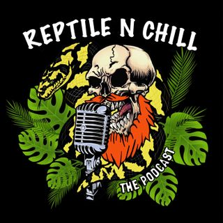 Herping in South Africa with Ryan Gostelow  - 49 Reptile n Chill