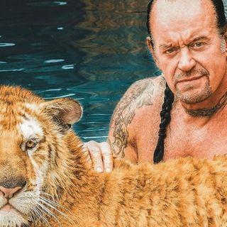 Tiger King Mania