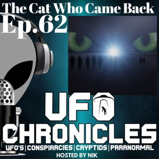 Ep.62 The Cat Who Came Back