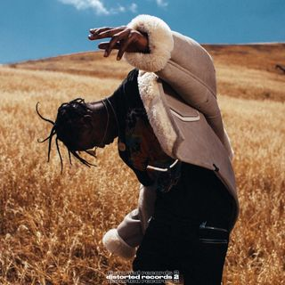 Travis Scott - goosebumbs