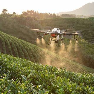 Agricoltura 4.0 il futuro del settore primario