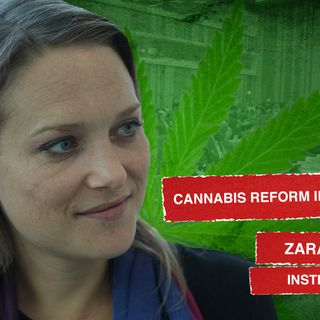 Interview with Zara Snapp - Cannabis Reform 2020