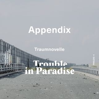 Episode 2: Traumnovelle