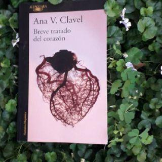 Breve tratado del corazón; un libro que habla del corazón, la crisis existencial y el suicidio