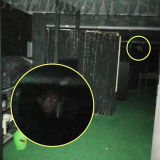 Family terrified by 'ghost of demonic monk' - And the Cryptid Creatures of Notts, Bigfoot, Dogman
