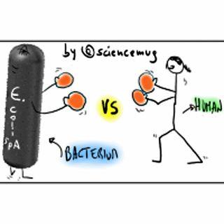 BACTERIA vs HUMAN CELLS (PT1 of 3)
