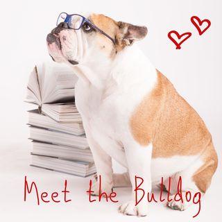 03_MTB_pappa è la parola magica per i bulldog