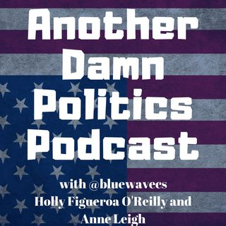 Another Damn Politics Podcast