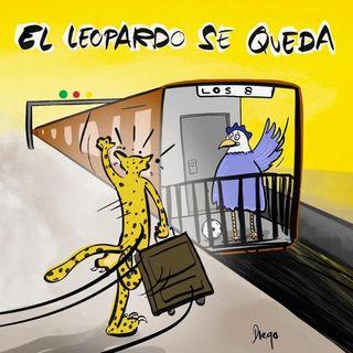 Corazón Leopardo - 21º episodio - Derrota en Bogotá.