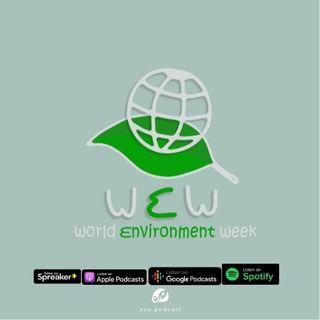 Ep. 08 | Ecopodcast - Giornata mondiale dell'ambiente