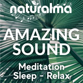 Meditation in the jungle - Music and sounds of nature