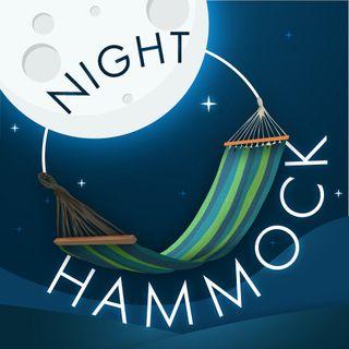 Night Hammock Trailer