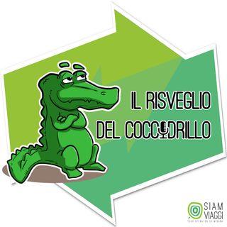 Il risveglio del coccodrillo