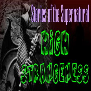 High Strangeness | Interview with Susan Demeter St. Clair | Podcast