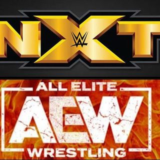 NXT to USA - Episode 433