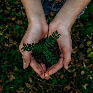 Cambiare piccole abitudini quotidiane può aiutarci a vivere in modo più sostenibile