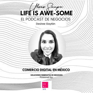 Desiree Gaytán: Comercio electrónico en México