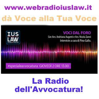 Voci dal Foro - Avv. Adriana Augenti e Avv. Nicola Zanni - 02.02.2017