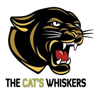 The Cat's Whiskers Podcast - Dead Rubber