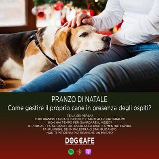#048 - PRANZO DI NATALE. Come gestire il proprio cane in presenza degli ospiti?