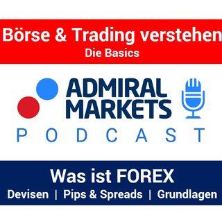Forex | Forex für Anfänger | Forex verstehen | Forex Trading | Das Devisenhandel Tutorial auf deutsch