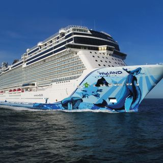 Eli Biran- Norwegian Cruise Lines