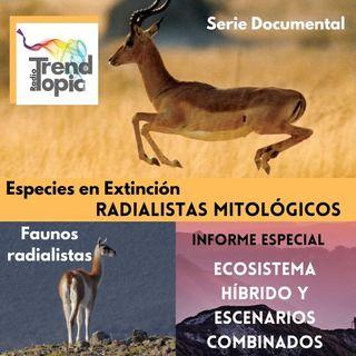 Radialistas Mitológicos - Serie Documental