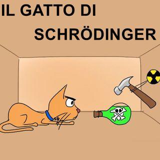 014 Il gatto di Schrödinger