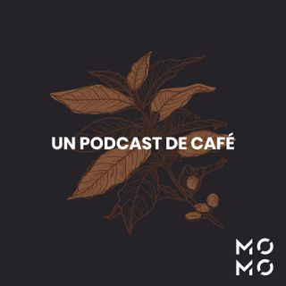 Yemen Contraataca - Un Podcast de Café x Momo Tostadores
