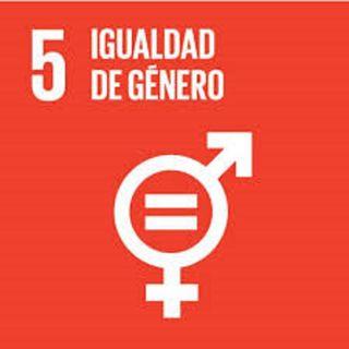 5. Igualdad de genero