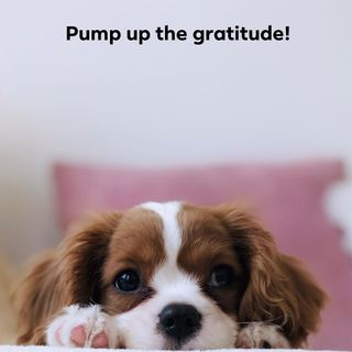 Time to pump up the gratitude! Ep. 231
