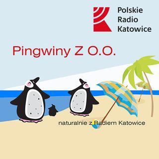 Pingwiny Z O.O. odc. 23 | Radio Katowice