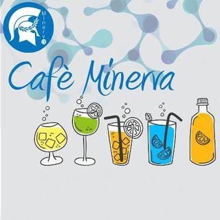 Cafè Minerva #1 - Dottor Assegnista Ricercatore Precario