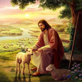 Musica cristiana | DIOS DESEA SALVAR AL HOMBRE LO MÁS POSIBLE
