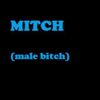 Episode 133 - Bitchez Like Mitchez , Mitchez Like Bitchez ; & They All End Up In DITCHEZ
