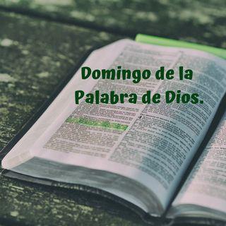 Domingo de la Palabra de Dios.