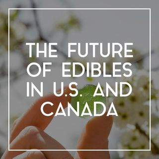 47 The Future of Edibles in the U.S. and Canada