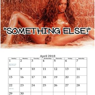 """SOMETHING ELSE!"" Single Nude Females 2018 Calendar"