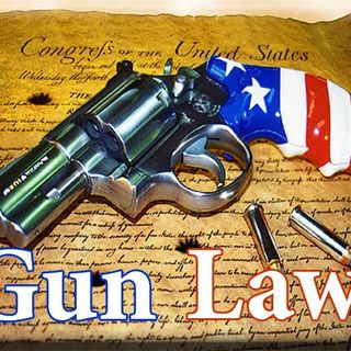 The Truth About Gun Laws!