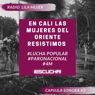 Càpsula 3. Mayo 4 Paro Nacional Colombia. En Cali las mujeres del Oriente resistimos
