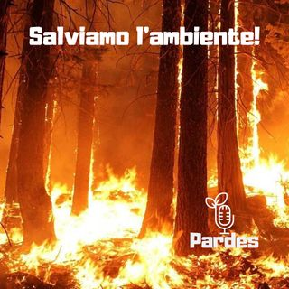 PARDES 044 - p - salviamo l'ambiente