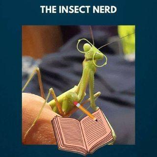 The Insect Nerd Zara Breden's podcast