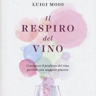 "Luigi Moio ""Il respiro del vino"""