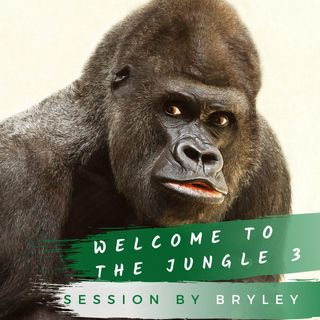 Welcome To The Jungle 3 Sessión DJBRYLEY