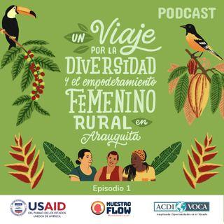 Episodio 1: Conociendo historias desde la diversidad y el empoderamiento femenino rural en Arauquita